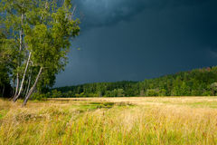 Stormy skies over the field Royalty Free Stock Image