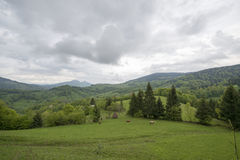 Stormy skies over a meadow Stock Image