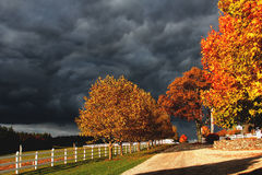 Stormy sky and autumn leaves Stock Photography