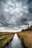 Stormy sky landscape over wetlands in countryside Royalty Free Stock Image
