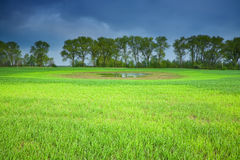 Stormy sky over a green field Stock Photography