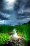 Stormy Sky Over Illuminated Wetlands Stock Photos