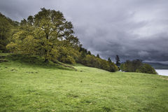 Stormy sky over trees in landscape in Lake DAISTRICT Royalty Free Stock Photo