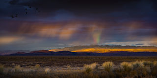 Stormy Sunset with rain and rainbow in the desert with light on mountain range. Royalty Free Stock Photos