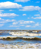 Stormy surf Royalty Free Stock Image