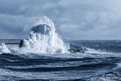 Stormy wave against pier Stock Photography