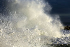 Stormy wave Royalty Free Stock Photo