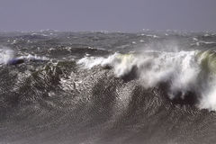 Free Stormy Waves Royalty Free Stock Photos - 18448298