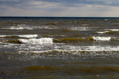 Stormy waves. Royalty Free Stock Images