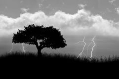 Stormy Weather. A field with a tree and lightening crashing on a stormy day Stock Photo