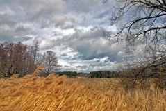 Stormy weather. Lake springtime in March stormy weather Stock Photography