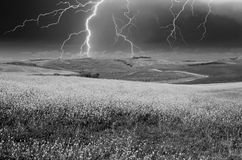 Stormy weather above Tuscan Meadow, spring time Royalty Free Stock Photography