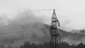 Stormy weather. Awe inspiring sublime nature with distribution line mast and birds on a wire stock video footage