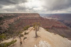 Stormy weather on the Grand Canyon. stock photo