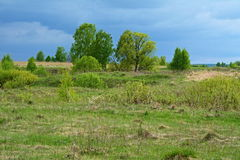 Before the stormy weather. Meadows and expanses of the European part of Russia royalty free stock photos