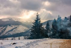 Stormy weather over forest in mountains. Stormy winter sky over spruce forest in fog by the road at the mountain hill Royalty Free Stock Photography