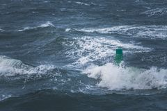 Green buoy in sea water stock images