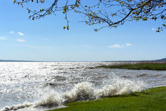 Stormy wind at Lake Balaton Stock Photography