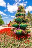 Storpamper med dekorativa blommor på stadsgatan Arkivfoto