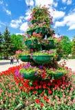 Storpamper med dekorativa blommor på stadsgatan Arkivfoton