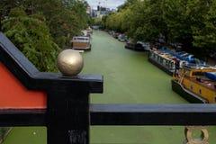Storslagen facklig kanal på lilla Venedig, Paddington, London Vattnet täckas i gröna alger efter sommarheatwaven, 2018 arkivbilder