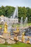 Storslagen kaskad för springbrunnar på den storslagna Petergof slotten i Ryssland Royaltyfri Foto
