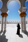 storslagen moské Royaltyfria Foton