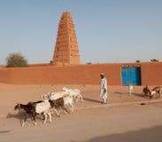 Storslagen moské av Agadez Royaltyfria Bilder