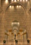 Storslagen moskéinre Arkivbilder