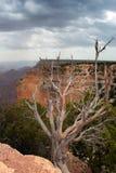 storslagen nationalpark USA för kanjon Arkivbild