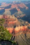 storslagen nationalpark USA för kanjon Arkivbilder