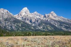 storslagen nationell panorama- parkteton USA visar wyoming Arkivbilder