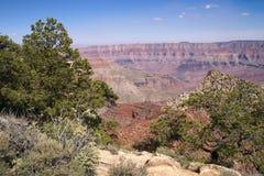 storslagen norr kant för kanjon Arkivbild