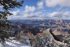 storslagen platsvinter för kanjon Arkivfoton