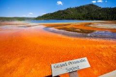 Storslagen prismatisk vår i yellowstone USA Arkivbilder
