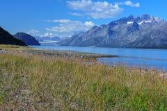 Storslagen Stillahavs- glaciär Royaltyfri Fotografi