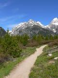 storslagen trail för laketaggartteton Arkivfoton