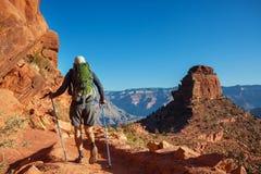 storslagen vandring för kanjon arkivfoto