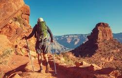 storslagen vandring för kanjon arkivbilder