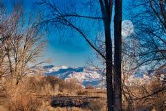 Storslaget landskap för dalColorado vinter arkivbild