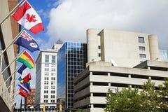 storslagna nationella forar för i stadens centrum flaggor Arkivbild
