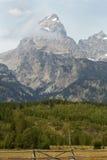Storslagna Teton berg, pinjeskog och staket, Jackson Hole, Wyo Arkivbilder