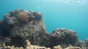 Storstilad oceanview och avslappnande ferie, från en höjdpunkt lager videofilmer
