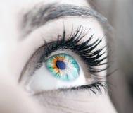 stort öga för skönhet Fotografering för Bildbyråer