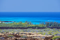 Stort öhawaii lava och hav Fotografering för Bildbyråer