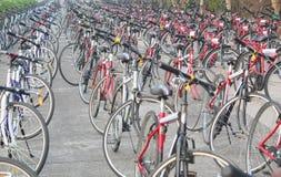Stort antal av cyklar uppställt på en väg Royaltyfria Bilder