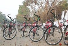 Stort antal av cyklar uppställt på en väg Royaltyfri Foto