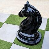 Stort av schack för svart eller mörk häst på utomhus- Arkivbilder
