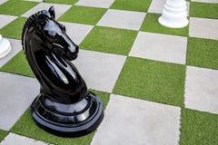 Stort av schack för svart eller mörk häst på utomhus- Royaltyfria Foton