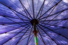Stort bl?tt paraply p? stranden fotografering för bildbyråer